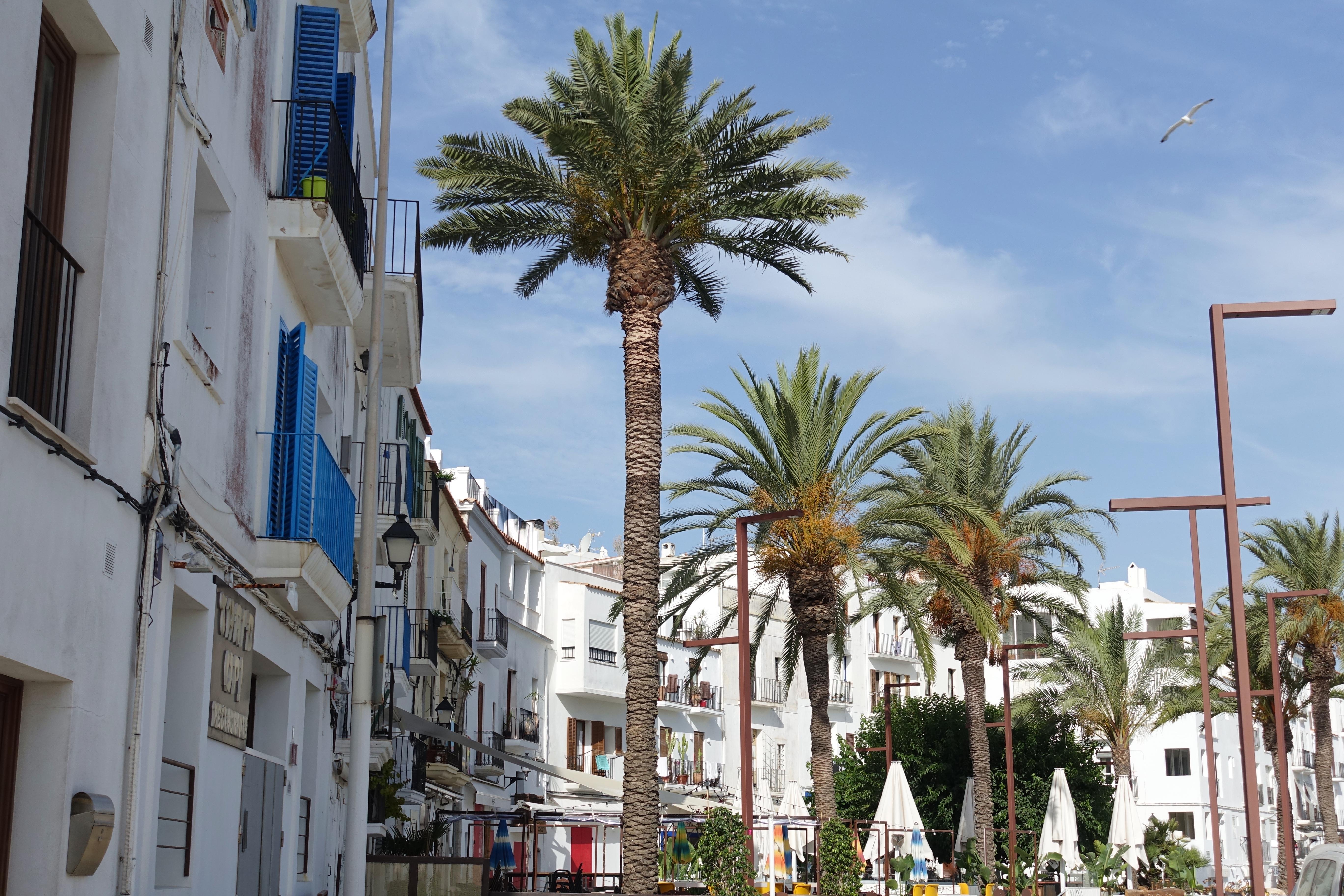 5 günlük Ibiza macerası